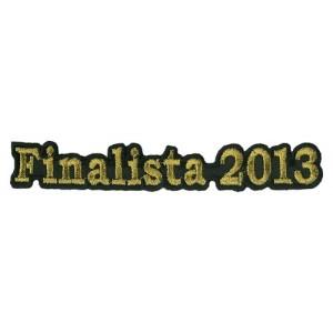 Finalist 2013